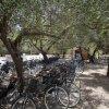 Baia Di Gallipoli Camping Resort